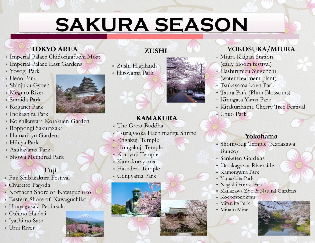This image of the sakura season in Tokyo and the Greater Tokyo Area is courtesy of CFAY in Yokosuka